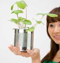 Corporate Responsibility dan Sikap Ramah lingkungan Ala Jepang